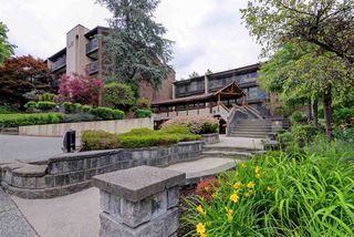 "Photo 20: 308 9857 MANCHESTER Drive in Burnaby: Cariboo Condo for sale in ""Barclay Woods"" (Burnaby North)  : MLS®# R2281560"