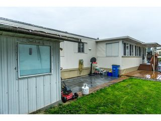 "Photo 19: 179 3665 244 Street in Langley: Otter District Manufactured Home for sale in ""LANGLEY GROVE ESTATES"" : MLS®# R2316679"