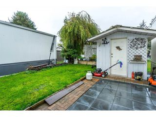 "Photo 20: 179 3665 244 Street in Langley: Otter District Manufactured Home for sale in ""LANGLEY GROVE ESTATES"" : MLS®# R2316679"