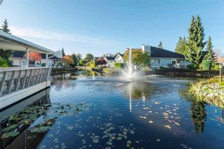 """Photo 19: 82 5550 LANGLEY Bypass in Langley: Langley City Townhouse for sale in """"Riverwynde"""" : MLS®# R2331096"""