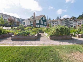 """Photo 2: 504 16380 64TH Avenue in Surrey: Cloverdale BC Condo for sale in """"THE RIDGE AT BOSE FARMS"""" (Cloverdale)  : MLS®# R2346721"""