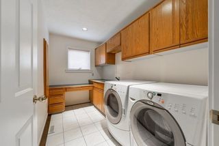 Photo 17: 256 WOLF RIDGE Close in Edmonton: Zone 22 House for sale : MLS®# E4146868