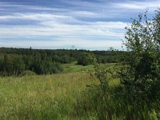 Photo 7: 7179 MAY Crescent in Edmonton: Zone 14 Vacant Lot for sale : MLS®# E4148898
