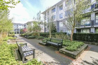 Photo 17: 121 9388 MCKIM Way in Richmond: West Cambie Condo for sale : MLS®# R2358879