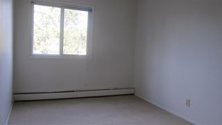 Photo 5: 301 5730 RIVERBEND Road NW in Edmonton: Zone 14 Condo for sale : MLS®# E4152294