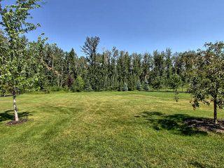 Photo 26: 21416 25 Avenue in Edmonton: Zone 57 House for sale : MLS®# E4163872