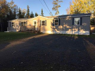 Photo 2: 2970 EAST RIVER EAST SIDE Road in Springville: 108-Rural Pictou County Residential for sale (Northern Region)  : MLS®# 201916339