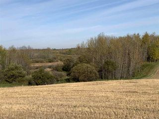 Photo 11: Twp. 545 & Rg. Rd. 280: Rural Sturgeon County Rural Land/Vacant Lot for sale : MLS®# E4175910