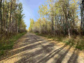 Photo 14: Twp. 545 & Rg. Rd. 280: Rural Sturgeon County Rural Land/Vacant Lot for sale : MLS®# E4175910