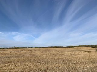 Photo 10: Twp. 545 & Rg. Rd. 280: Rural Sturgeon County Rural Land/Vacant Lot for sale : MLS®# E4175910