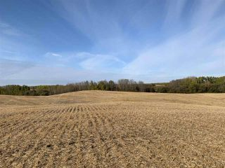 Photo 9: Twp. 545 & Rg. Rd. 280: Rural Sturgeon County Rural Land/Vacant Lot for sale : MLS®# E4175910