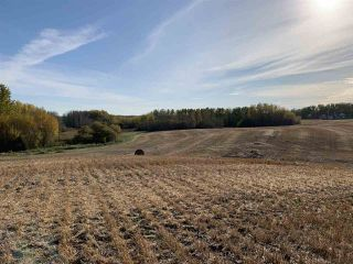 Photo 12: Twp. 545 & Rg. Rd. 280: Rural Sturgeon County Rural Land/Vacant Lot for sale : MLS®# E4175910