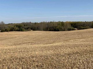 Photo 8: Twp. 545 & Rg. Rd. 280: Rural Sturgeon County Rural Land/Vacant Lot for sale : MLS®# E4175910