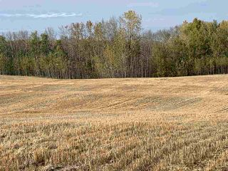 Photo 5: Twp. 545 & Rg. Rd. 280: Rural Sturgeon County Rural Land/Vacant Lot for sale : MLS®# E4175910