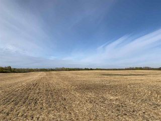 Photo 6: Twp. 545 & Rg. Rd. 280: Rural Sturgeon County Rural Land/Vacant Lot for sale : MLS®# E4175910