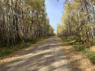 Photo 13: Twp. 545 & Rg. Rd. 280: Rural Sturgeon County Rural Land/Vacant Lot for sale : MLS®# E4175910