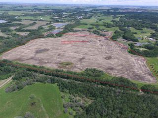 Photo 2: Twp. 545 & Rg. Rd. 280: Rural Sturgeon County Rural Land/Vacant Lot for sale : MLS®# E4175910