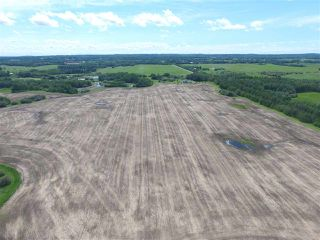 Photo 3: Twp. 545 & Rg. Rd. 280: Rural Sturgeon County Rural Land/Vacant Lot for sale : MLS®# E4175910
