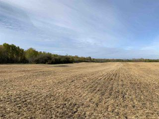 Photo 7: Twp. 545 & Rg. Rd. 280: Rural Sturgeon County Rural Land/Vacant Lot for sale : MLS®# E4175910