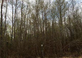Photo 2: 52 Fred Jeschke Drive in Lac Du Bonnet RM: Granite Hills Residential for sale (R28)  : MLS®# 202006877