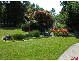 Photo 5: 26116 84 Avenue in Langley: Country Line Glen Valley House for sale : MLS®# F2625561