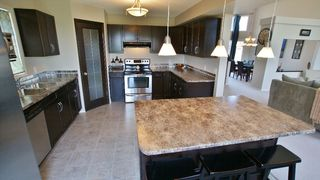 Photo 11: 103 Filbert Crescent in Winnipeg: North Kildonan Residential for sale (North East Winnipeg)  : MLS®# 1214781
