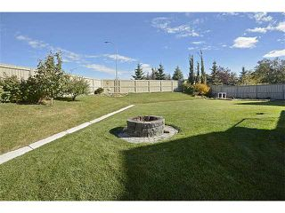 Photo 19: 2556 COOPERS Circle SW: Airdrie Residential Detached Single Family for sale : MLS®# C3639528