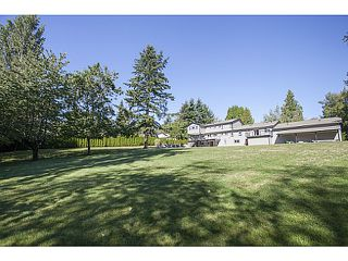 Photo 6: 18138 19A Avenue in Surrey: Hazelmere House for sale (South Surrey White Rock)  : MLS®# F1429285