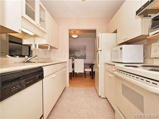 Photo 6: 307 1419 Stadacona Ave in VICTORIA: Vi Fernwood Condo Apartment for sale (Victoria)  : MLS®# 694240