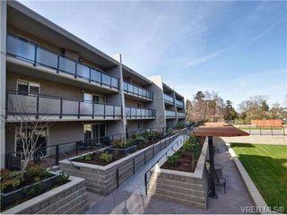 Photo 16: 307 1419 Stadacona Ave in VICTORIA: Vi Fernwood Condo Apartment for sale (Victoria)  : MLS®# 694240