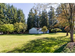 """Photo 16: 2352 172 Street in Surrey: Pacific Douglas House for sale in """"GRANDVIEW"""" (South Surrey White Rock)  : MLS®# R2000821"""