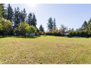 """Photo 17: 2352 172 Street in Surrey: Pacific Douglas House for sale in """"GRANDVIEW"""" (South Surrey White Rock)  : MLS®# R2000821"""