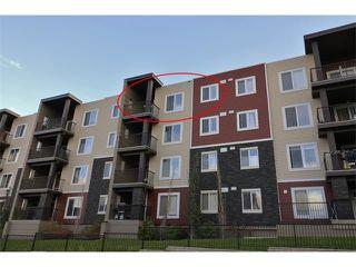 Photo 2: 419 195 KINCORA GLEN Road NW in Calgary: Kincora Condo for sale : MLS®# C4032586