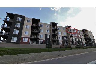 Photo 3: 419 195 KINCORA GLEN Road NW in Calgary: Kincora Condo for sale : MLS®# C4032586