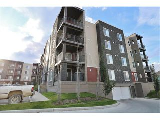 Photo 39: 419 195 KINCORA GLEN Road NW in Calgary: Kincora Condo for sale : MLS®# C4032586