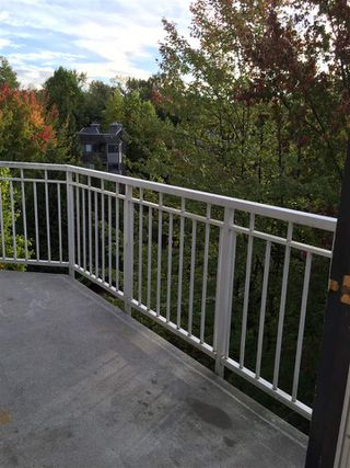 """Photo 9: 311 9620 MANCHESTER Drive in Burnaby: Cariboo Condo for sale in """"BROOKSIDE PARK"""" (Burnaby North)  : MLS®# R2064058"""