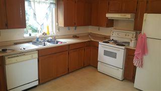 Photo 13: 12493 113 Avenue in Surrey: Bridgeview House for sale (North Surrey)  : MLS®# R2154741