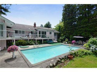 Photo 6: 1685 W KING EDWARD AV in Vancouver: Home for sale : MLS®# V1017556
