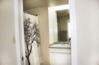 """Photo 13: 605 4603 HAZEL Street in Burnaby: Forest Glen BS Condo for sale in """"CRYSTAL PLACE"""" (Burnaby South)  : MLS®# R2183039"""