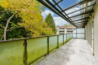 "Photo 17: 315 4363 HALIFAX Street in Burnaby: Brentwood Park Condo for sale in ""BRENT GARDENS"" (Burnaby North)  : MLS®# R2220468"