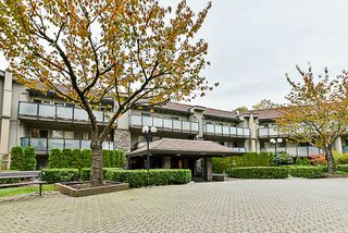 "Photo 19: 315 4363 HALIFAX Street in Burnaby: Brentwood Park Condo for sale in ""BRENT GARDENS"" (Burnaby North)  : MLS®# R2220468"