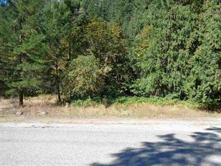 Photo 3: 19841 SILVER SKAGIT Road in Hope: Hope Silver Creek Land for sale : MLS®# R2231718