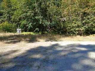 Photo 4: 19841 SILVER SKAGIT Road in Hope: Hope Silver Creek Land for sale : MLS®# R2231718