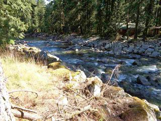 Photo 6: 19841 SILVER SKAGIT Road in Hope: Hope Silver Creek Land for sale : MLS®# R2231718