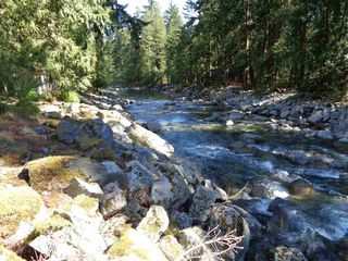 Photo 8: 19841 SILVER SKAGIT Road in Hope: Hope Silver Creek Land for sale : MLS®# R2231718