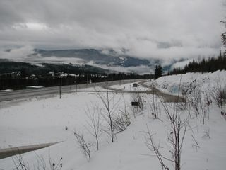 Photo 6: Lot 1 Trans Can Hwy: Blind Bay Land Only for sale (Shuswap)  : MLS®# 10148323