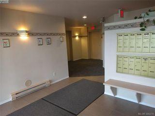Photo 17: 103 3215 Rutledge St in VICTORIA: SE Quadra Condo Apartment for sale (Saanich East)  : MLS®# 780280