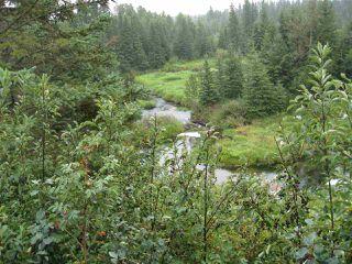 Main Photo: 55119A Rge Rd 23: Rural Lac Ste. Anne County House for sale : MLS®# E4126743