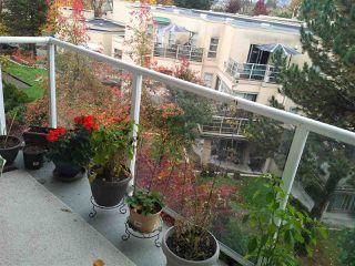 """Photo 16: 403 22255 122 Avenue in Maple Ridge: West Central Condo for sale in """"MAGNOLIA GATE"""" : MLS®# R2319942"""