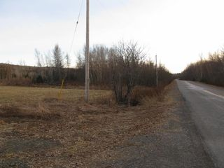 Photo 3: West River East Side Road in Durham: 108-Rural Pictou County Vacant Land for sale (Northern Region)  : MLS®# 201902921